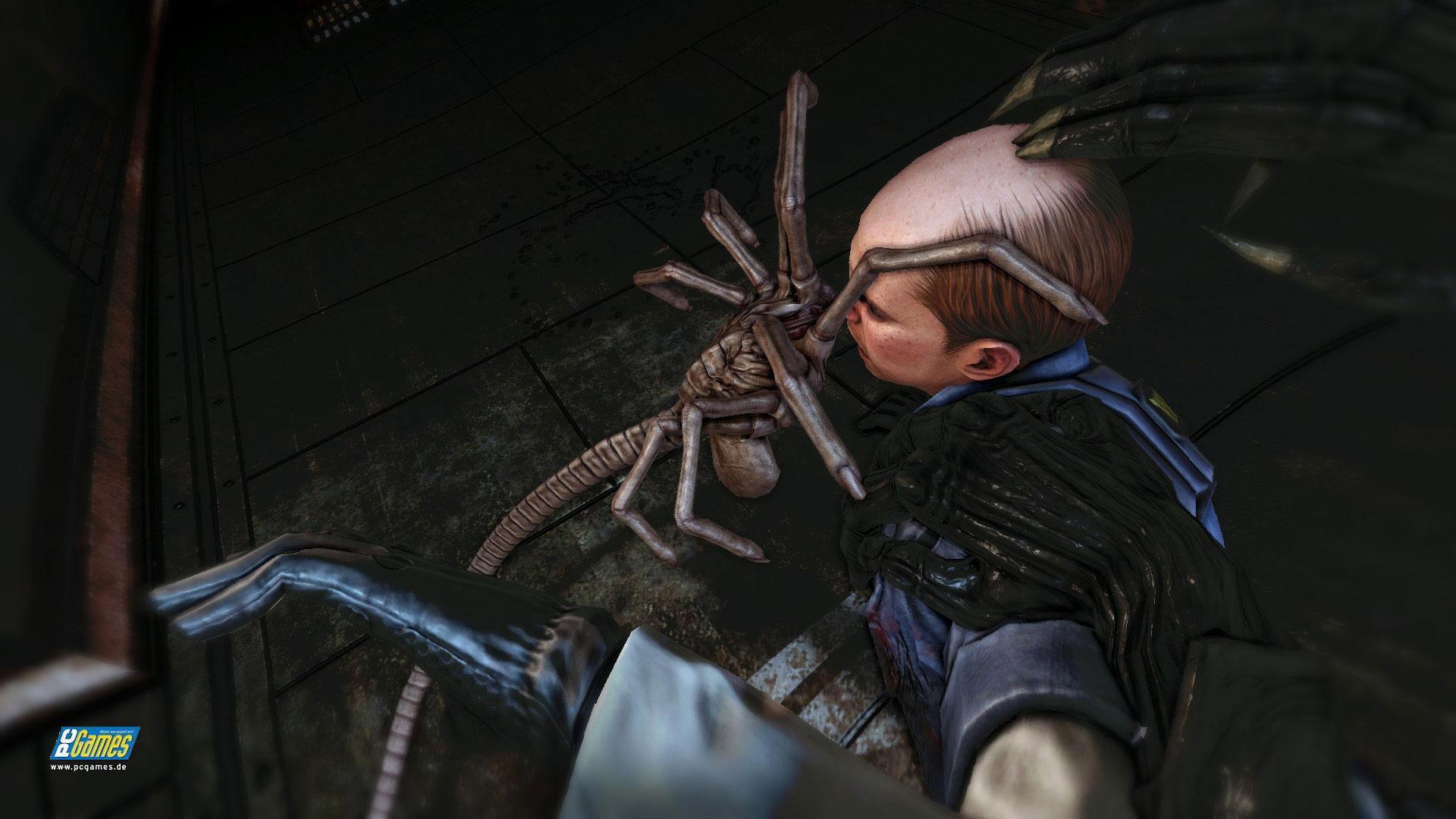 Чужие против Хищника / Aliens vs. Predator ( 2010 PC ENG ) + RUS/ENG